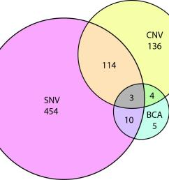 figure 3 venn diagram showing the overlap of autism risk genes with evidence of copy number variation cnv single nucleotide variation snv  [ 1098 x 970 Pixel ]