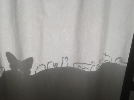 Schattenspiel. Auf dem Festersims stehen Backförmli welche dieses tolle Schattenspiel bei Abendessen an den Vorhang zauberten.