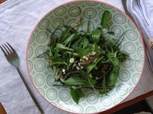 Wildkräuter Salat Teller