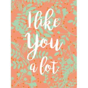 Waldgraefin Postkarte I like you a lot WG064