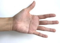 Linke Handinnenfläche