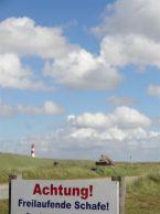 Naturschutzgebiet Sylter Ellenbogen