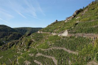 Rotweinwanderweg - Ahrtal