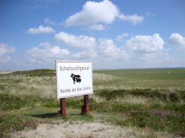 Schafzuchtgebiet am Ellenbogen