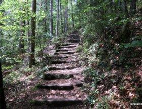 Vakantie dagboek – 11 dagen Wildberg Duitsland