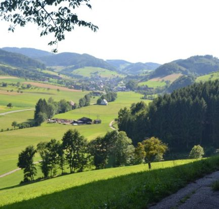 camping kinzigtal in steinach