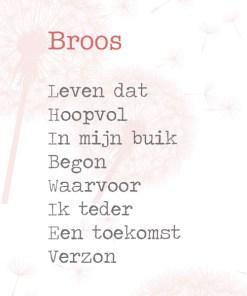 broos gedicht lentezoet, miskraam -liefsvanlauren.nl