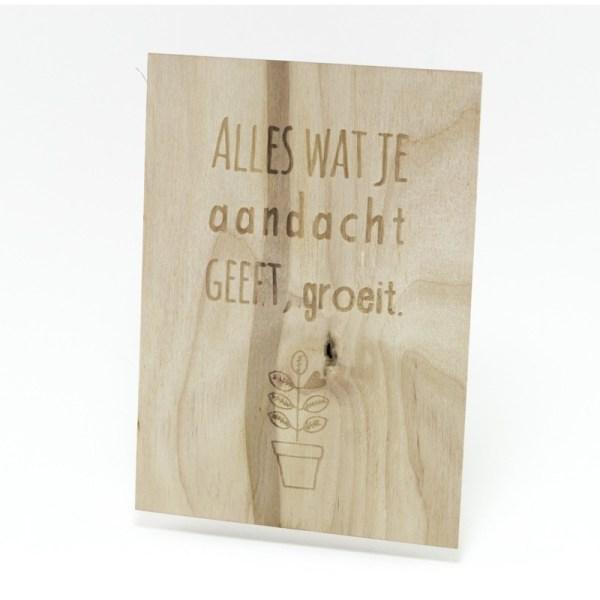 alles wat je aandacht geeft groeit, MIEKinvorm, Beavers Woodland, Liefsvanlauren.nl