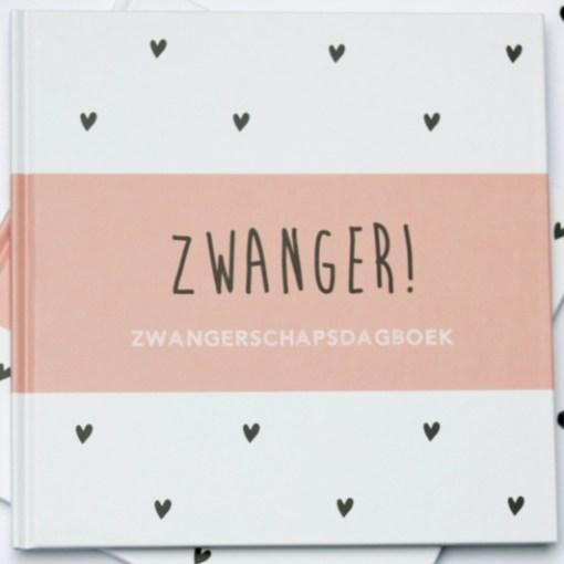 Zwangerschapsdagboek roze, zwanger, huisjeno56, liefsvanlauren.nl