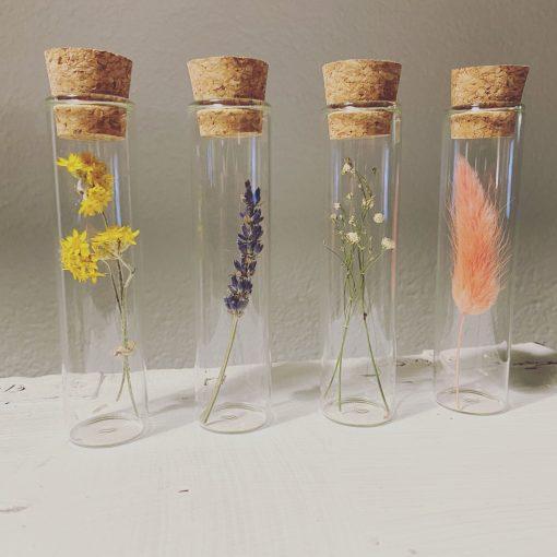 droogbloemen voor jou, droogbloem in glazen buisje, liefsvanlauren.nl