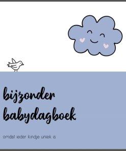Bijzonder babyboek, eerste jaar babyboek, niet standaard mijlpalen, liefsvanlauren.nl