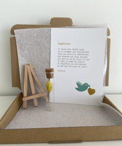 brievenbus post dagdroom, brievenbus pakket dagdroom, hoop en vertrouwen, lentezoet, brievenbus geluk, liefsvanlauren.nl