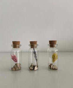 droogbloem mini's met houten hartjes, phalaris droogbloem, droogbloem in glazen buisje, liefsvanlauren.nl