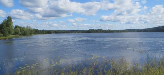 Zweden,Dalarna,augustus 2014