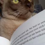 Pepijn,lezen,Burmees