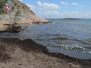 Zweden,strandje Oldsby,Tjörn,storm,zeewier