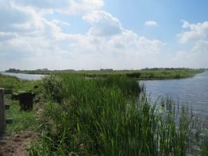 Ulesprong,Friesland,fietsen,zon