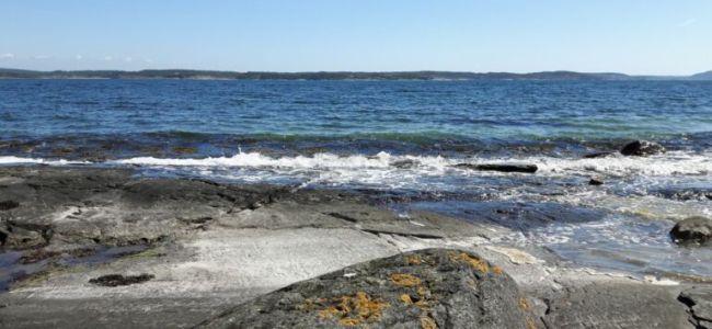 Zweden,Tjörn,Berga,zee,zon,zwaluwen,golven,wind,mei,2016