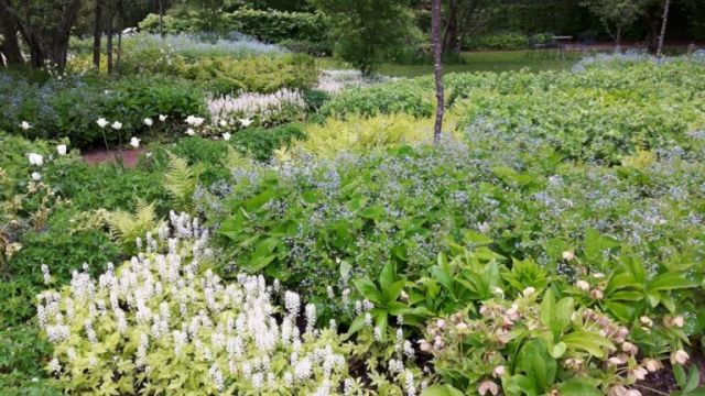 Zweden,Näs,geboortehuis,tuin,Astrid Lindgren,mei,2016