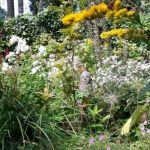 beeld, kunstenaar An Zorn,mijn moeder,tuin,tuinkabouter,Friesland