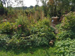 een nieuw werkhoekje in de tuin