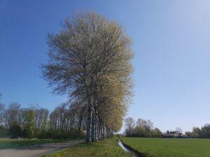 Covid19 - mijn landgoed én een schoolreisje