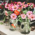 flowers in glass jars