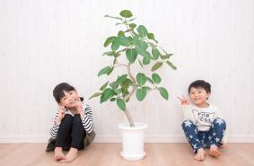 green living two kids with houseplant