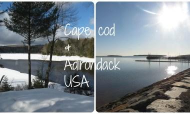 cape cod adirondack