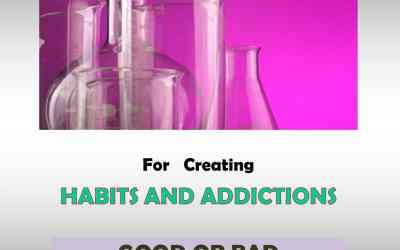 4. HOW ADDICTION WORKS (part II of V)