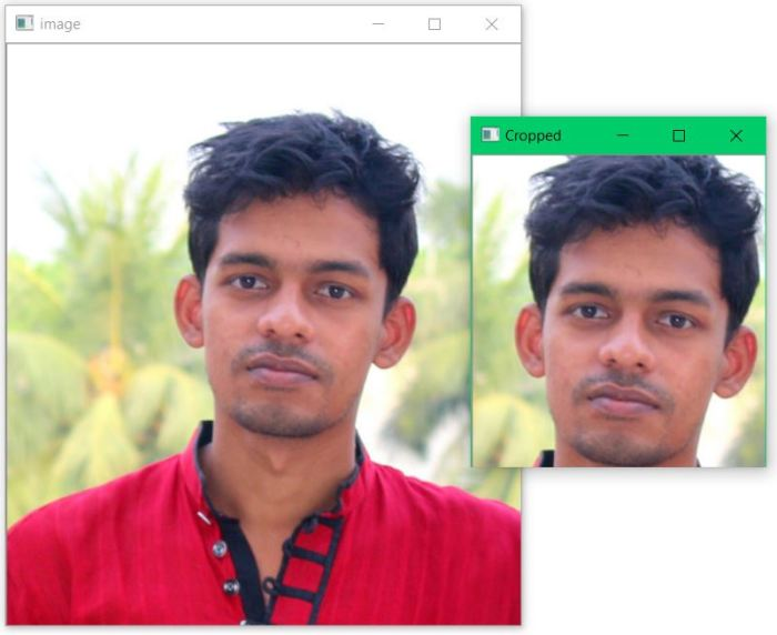 crop How to Crop OpenCV Image using Mouse Click and Movement in Python