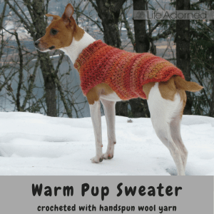 We have an active dog, but her small frame and thin fur sometimes leave her shivering! This pink pup sweater was crocheted to size using handspun wool yarn.