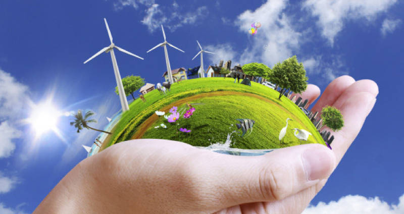 Live an Awesome Earth Friendly Lifestyle