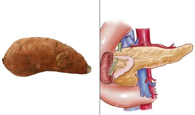 Sweet-Potatoes-PancreasFoods-That-Look-Like-Body-Parts