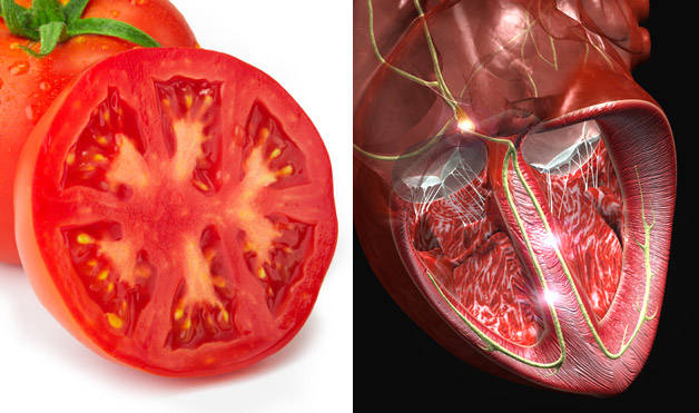 Tomato-HeartFoods-That-Look-Like-Body-Parts