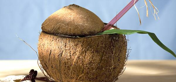 10 Things You Don't Know About Coconuts