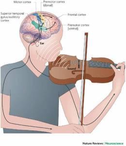Music-Motor-and-Reasoning-Skills