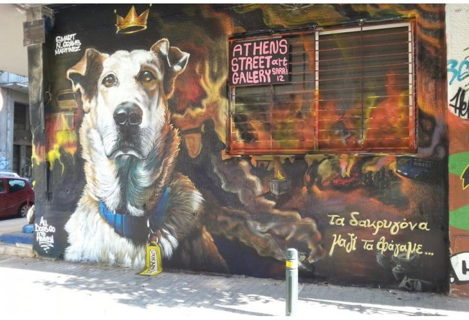 03-The Story of Loukanikos and Other Greek Riot Dogs