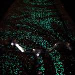 03-van-gogh-starry-night-glowing-bike