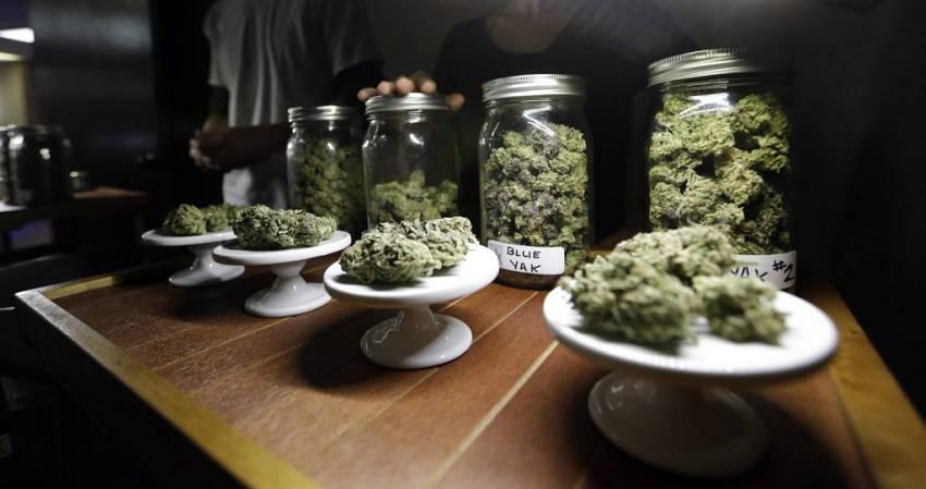 50 States Legalize Medical Marijuana