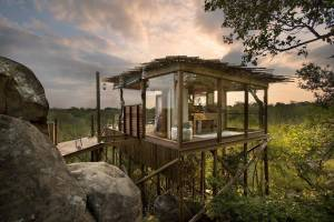 Kingston Treehouse, Lion Sands, Africa