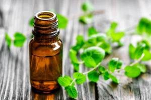 Myths and Misconceptions of Naturopathy