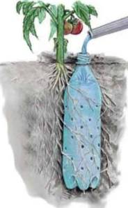 Make use of water bottles to water your plants
