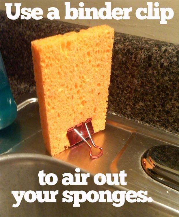 Use binder clip to prevent smelly sponges