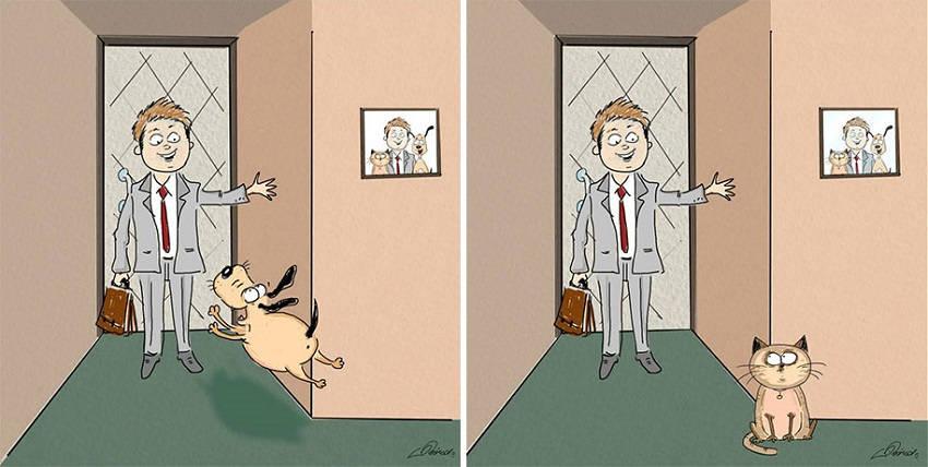 animals-pets-differences-cat-vs-dog-bird-born-3