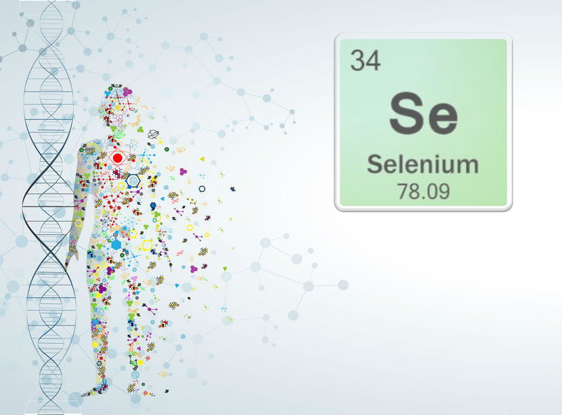 Spot the Warning Signs of Selenium Deficiency
