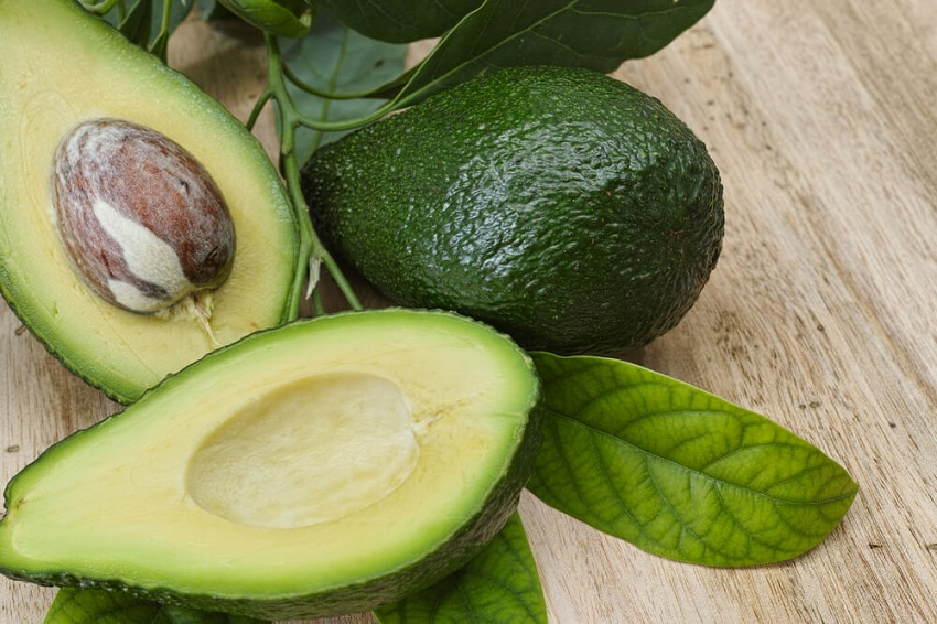 How to grow avocado tree from pit for an endless supply of for Grow your own avocado tree from seed