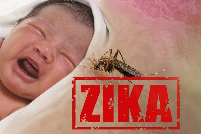 Preventing Zika Virus Infection