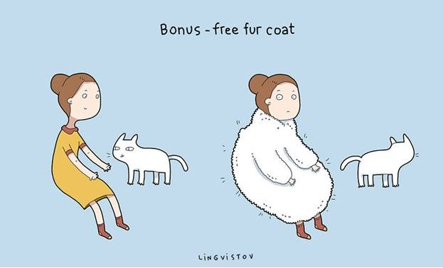 Owning a cat funny illustrations