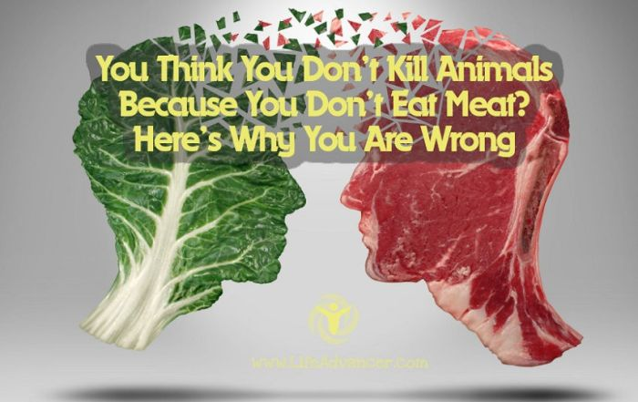 Think Kill Animals Because Don't Eat Meat